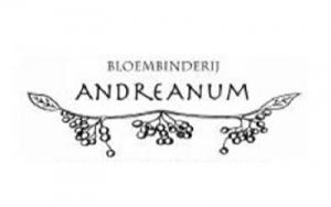 andreanum